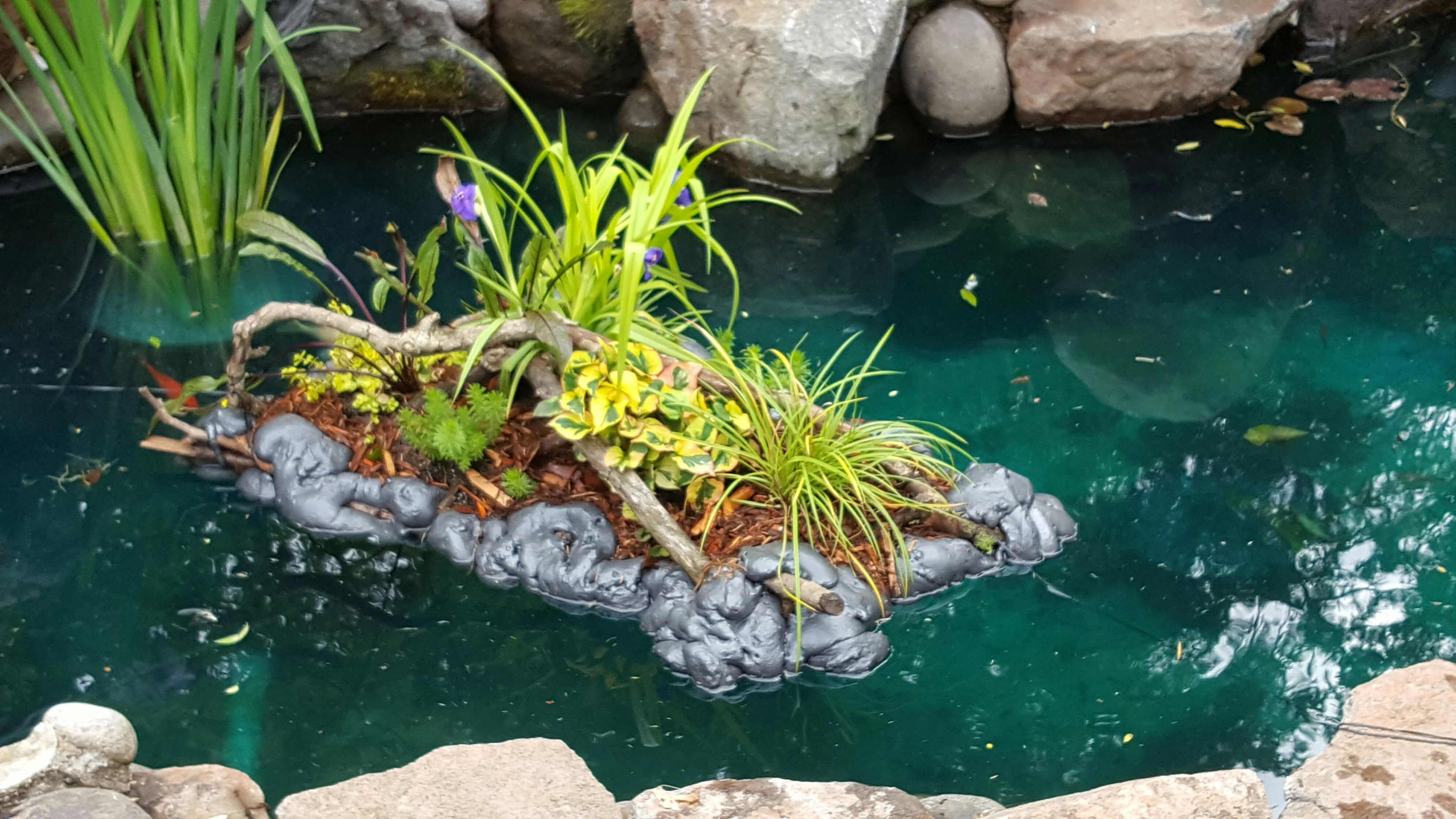 Floating islands water plants garden ponds loomis ca for Water plants for ponds